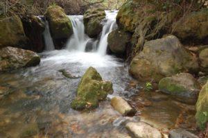 Ruta rio majaceite